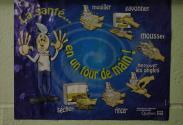 Imagette de la collection